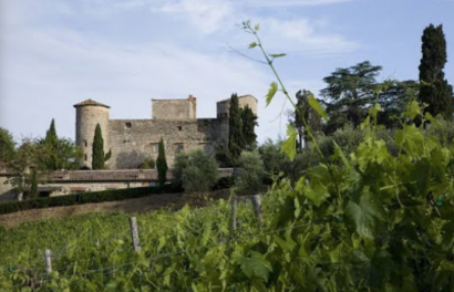 A Wonderful Castel For The Best Day Of Your Life